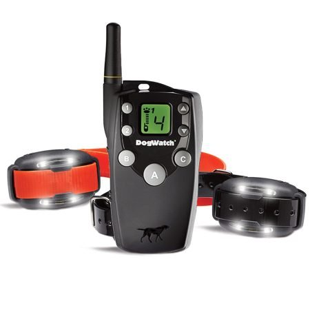 BigLeash Remote Training package for 2 dogs