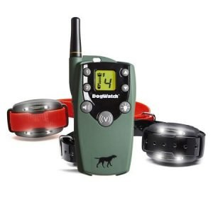 Vibration remote trainer for 2 dogs